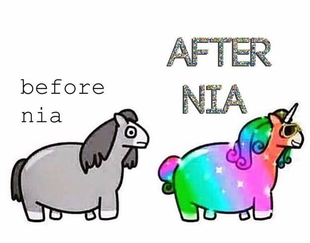 nia-pic